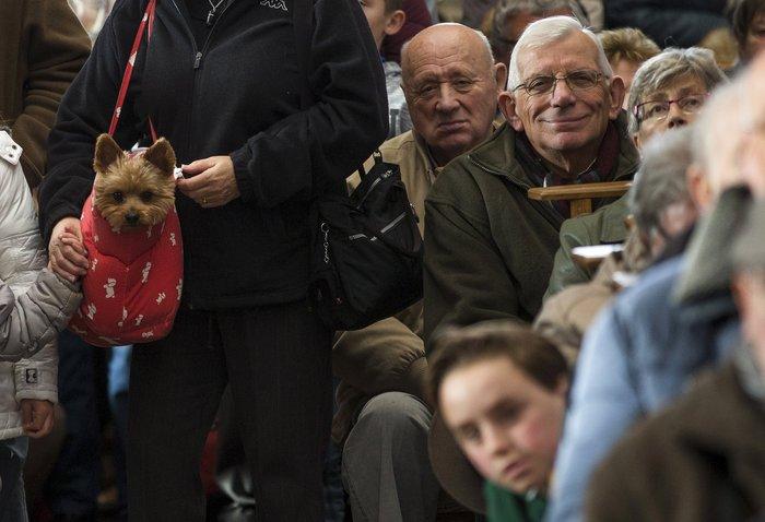 Παπάς ευλογεί τους...σκύλους των πιστών - εικόνα 10