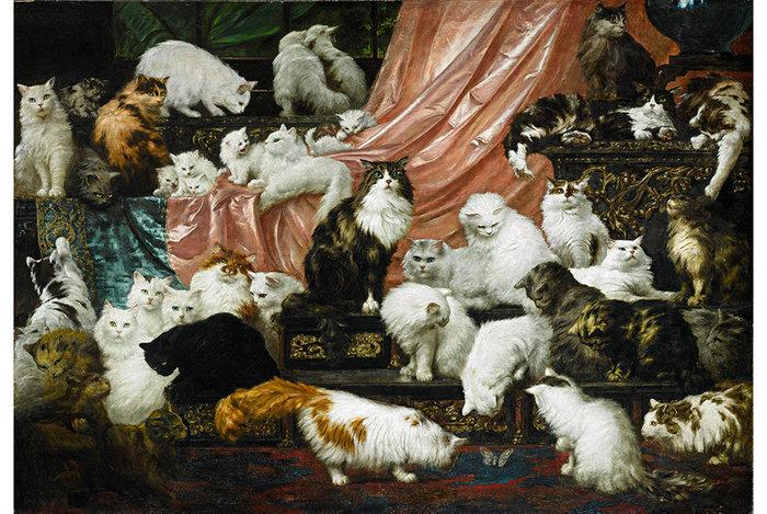 Οι πιο ακριβές γάτες του κόσμου! Η πώλησή τους έσπασε όλα τα ρεκόρ!