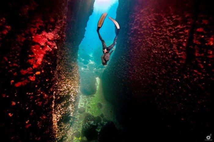 Η ομορφιά, η αξία και η μοναδικότητα του Ελληνικού υποβρύχιου τοπίου - εικόνα 3