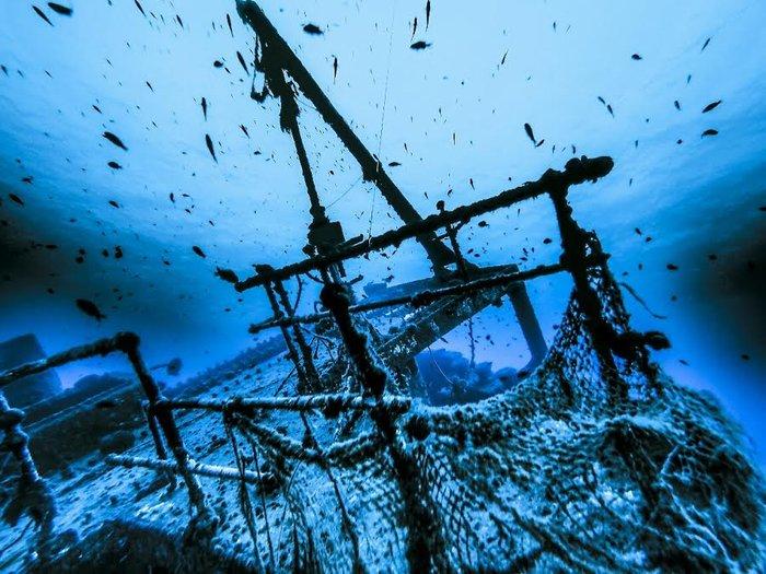 Η ομορφιά, η αξία και η μοναδικότητα του Ελληνικού υποβρύχιου τοπίου - εικόνα 2