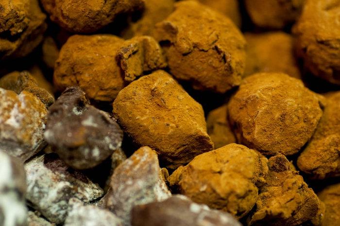 Σοκόλαση: Οι Αθηναίοι «βούτηξαν» στο εργοστάσιο σοκολάτας - εικόνα 10