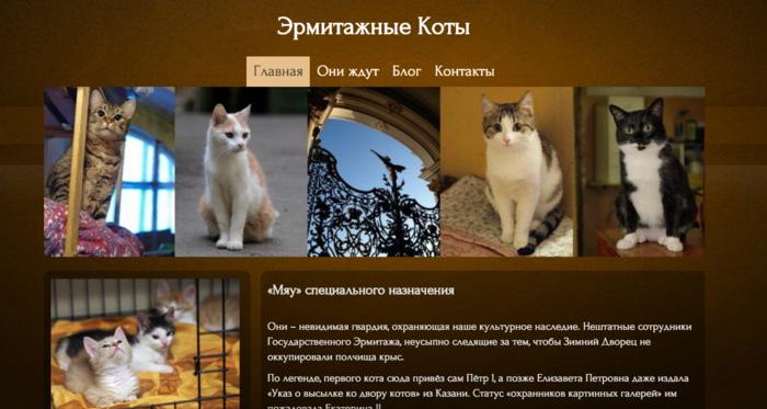 Οι γάτες του Ερμιτάζ προς υιοθεσία - εικόνα 2
