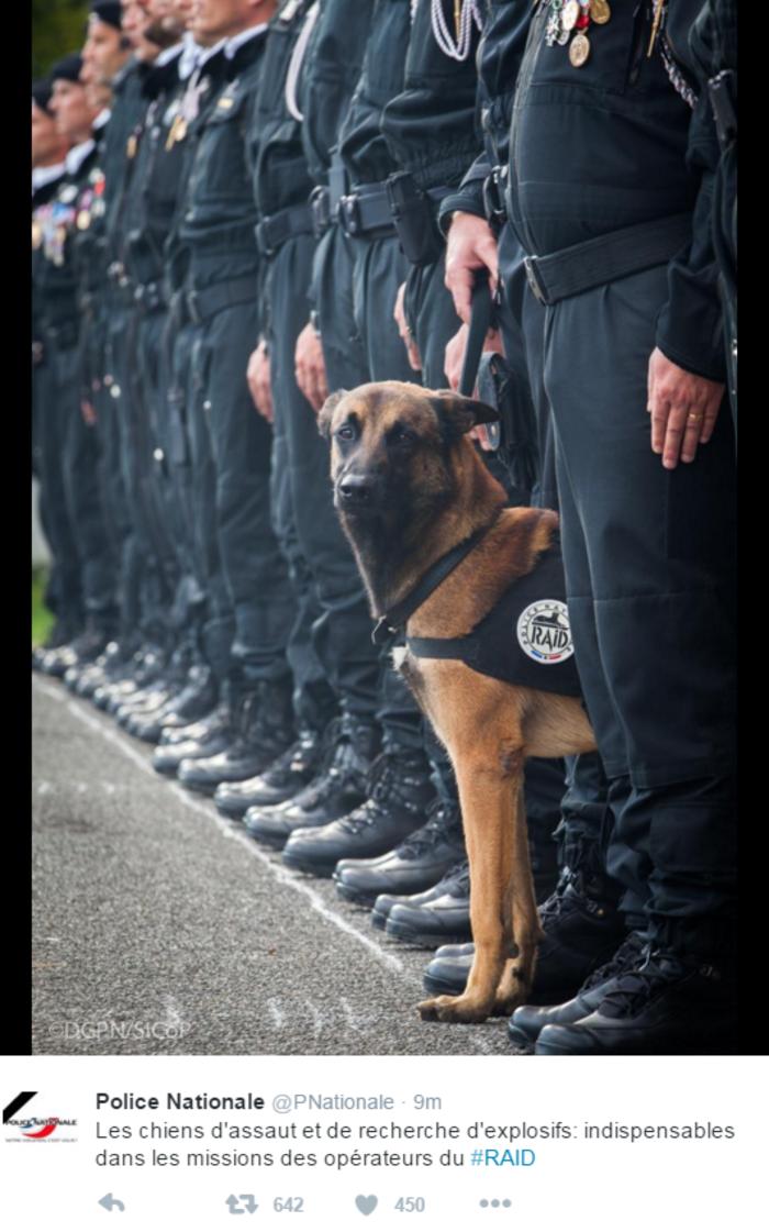 Nεκρός κι ένας σκύλος της αστυνομίας στο Σεν Ντενί