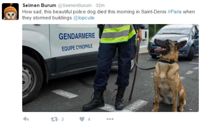 Nεκρός κι ένας σκύλος της αστυνομίας στο Σεν Ντενί - εικόνα 4