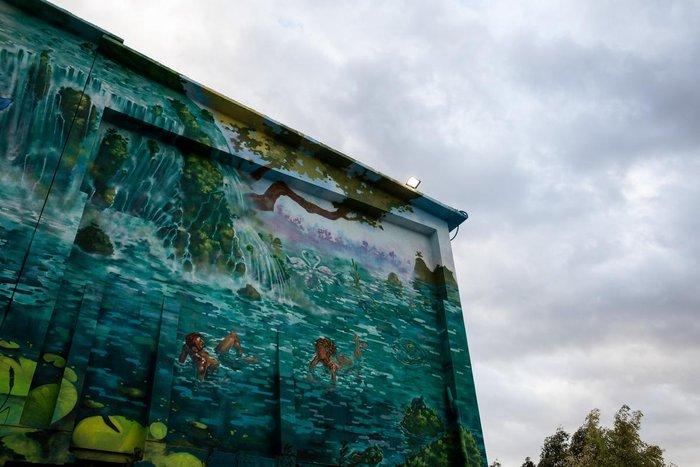 Τα εντυπωσιακά γκράφιτι στο εργοστάσιο της ΤΙΤΑΝ - εικόνα 8