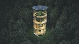 Το γυάλινο σπίτι χωρίς τοίχους, που τυλίγεται σε ένα τεράστιο δέντρο!
