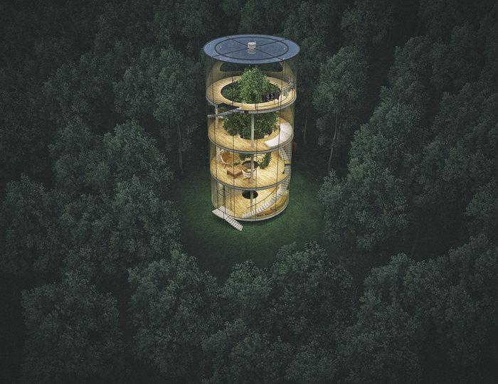 Το γυάλινο σπίτι χωρίς τοίχους, που τυλίγεται σε ένα τεράστιο δέντρο! - εικόνα 2