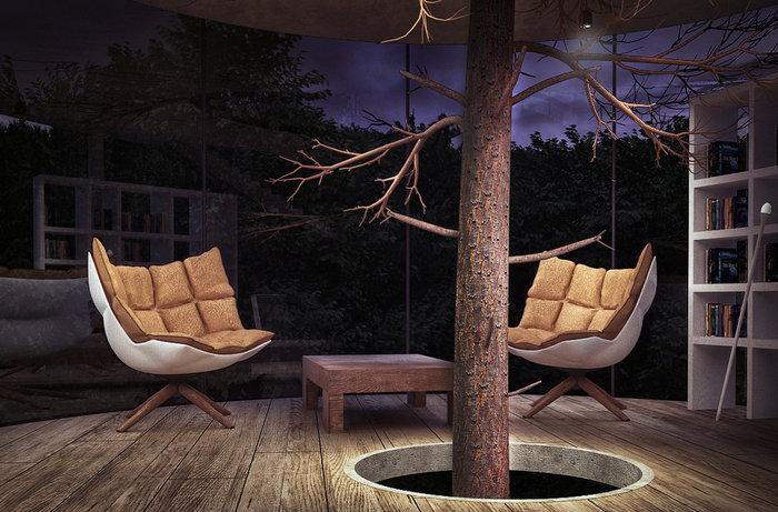 Το γυάλινο σπίτι χωρίς τοίχους, που τυλίγεται σε ένα τεράστιο δέντρο! - εικόνα 5