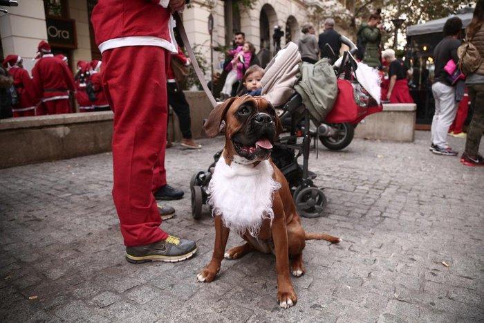 Σήμερα το «2ο Athens Santa Run», κλειστό το κέντρο της Αθήνας - εικόνα 5