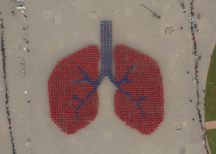 Οι Κινέζοι κατέχουν το ρεκόρ Γκίνες για τη μεγαλύτερη ανθρώπινη αναπαράστασηοργάνου του σώματος, με 1.500 συμμετέχοντες