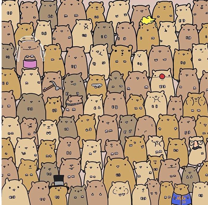 Μπορείτε να βρείτε την πατάτα ανάμεσα στα χάμστερ;