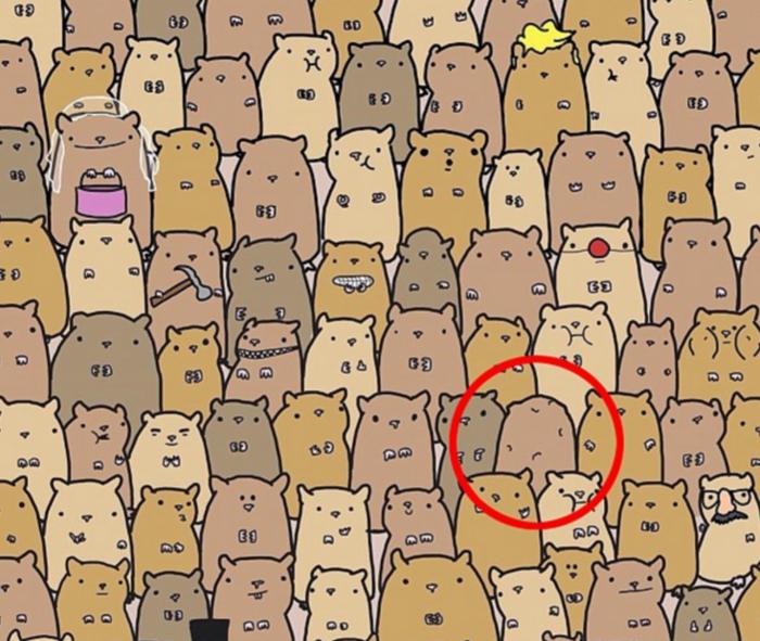 Μπορείτε να βρείτε την πατάτα ανάμεσα στα χάμστερ; - εικόνα 2