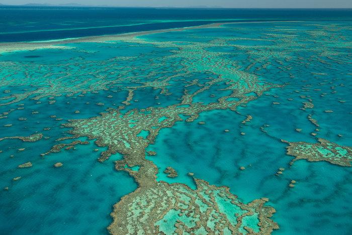 Ο Μεγάλο Κοραλλιογενής Ύφαλος της Αυστραλίας