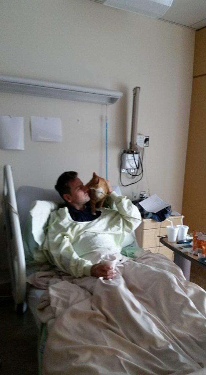 Νοσοκομείο στον Καναδά καθιερώνει επισκεπτήριo ζώων στα αφεντικά τους - εικόνα 2