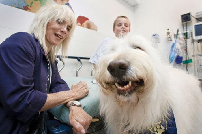 Νοσοκομείο στον Καναδά καθιερώνει επισκεπτήριo ζώων στα αφεντικά τους - εικόνα 6