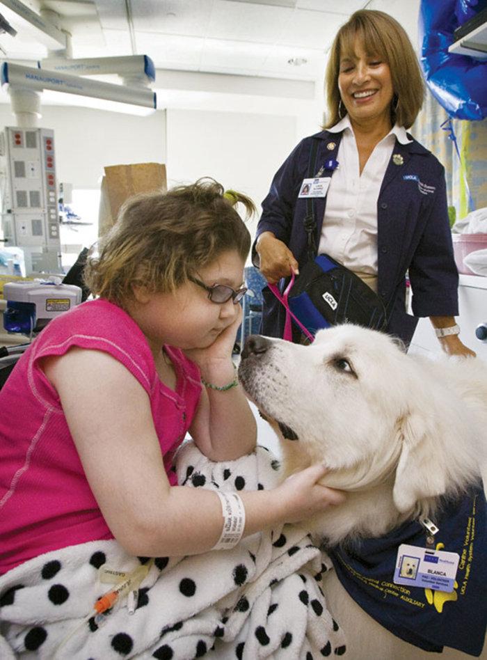 Νοσοκομείο στον Καναδά καθιερώνει επισκεπτήριo ζώων στα αφεντικά τους - εικόνα 7
