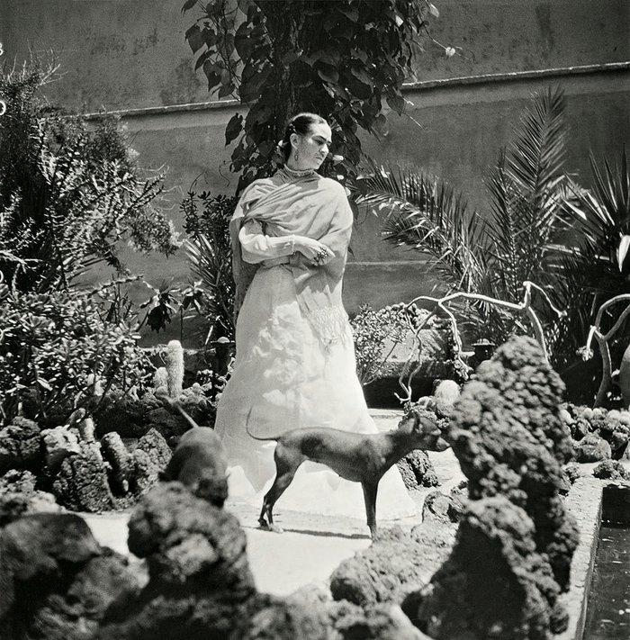 Οι μοναδικές  φωτογραφίες της Φρίντα Κάλο πριν το τέλος - εικόνα 6