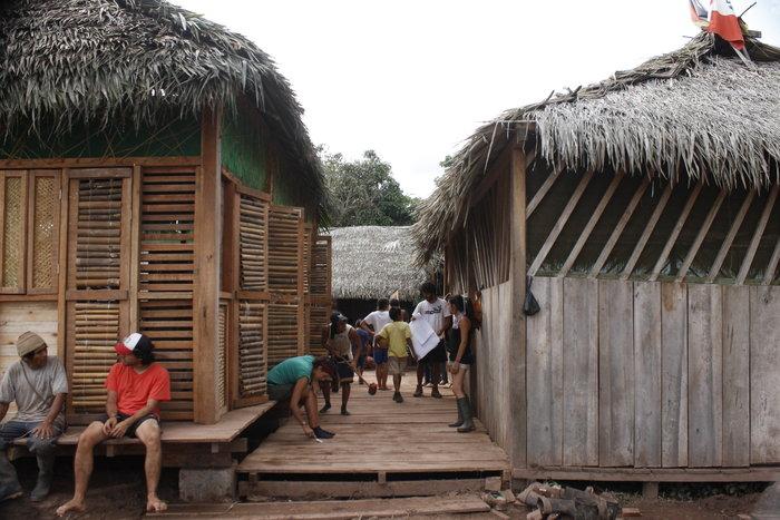 Μεταμορφώνοντας τη ζούγκλα του Αμαζόνιου - εικόνα 3