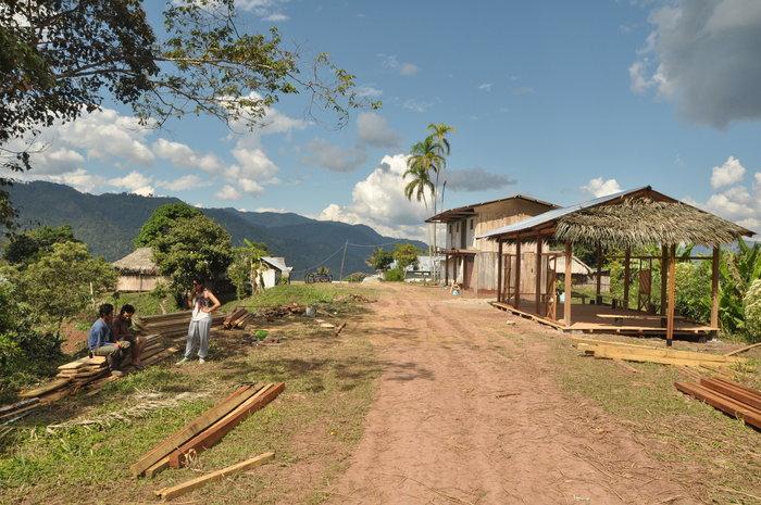 Μεταμορφώνοντας τη ζούγκλα του Αμαζόνιου - εικόνα 6