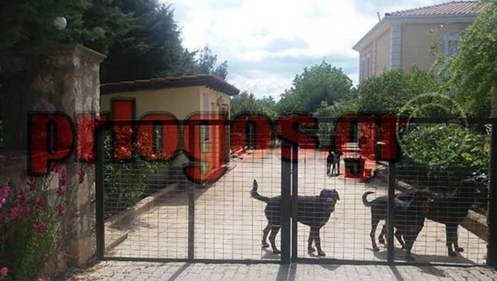 Κοζάνη: Το σπίτι & οι μαρτυρίες των ιδιοκτητών για τα ροτβάιλερ