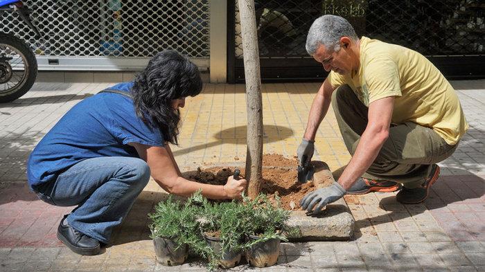 Ένας μικρός μεσογειακός κήπος στο κέντρο της Αθήνας - εικόνα 7