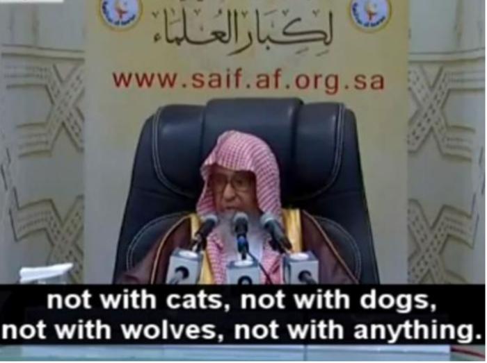 «Ούτε με γάτες, ούτε με σκύλους, ούτε με λύκους, ούτε με τίποτα» κατέληξε.