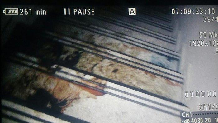Εικόνες φρίκης στο υπόγειο που πέθανε η Αγραφιώτου - εικόνα 3