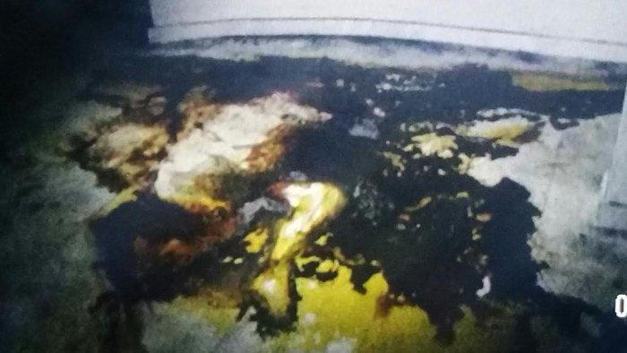 Εικόνες φρίκης στο υπόγειο που πέθανε η Αγραφιώτου - εικόνα 4