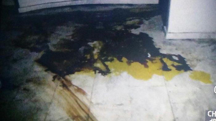 Εικόνες φρίκης στο υπόγειο που πέθανε η Αγραφιώτου - εικόνα 5