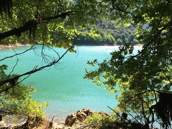 Λίμνη Στεφανιάδας: Ανακαλύψτε την τελευταία φυσική λίμνη της Ελλάδας - εικόνα 4