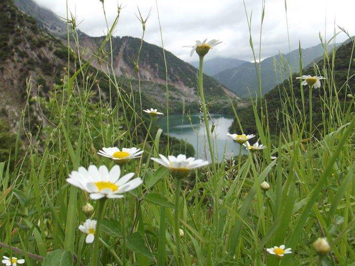 Λίμνη Στεφανιάδας: Ανακαλύψτε την τελευταία φυσική λίμνη της Ελλάδας - εικόνα 8