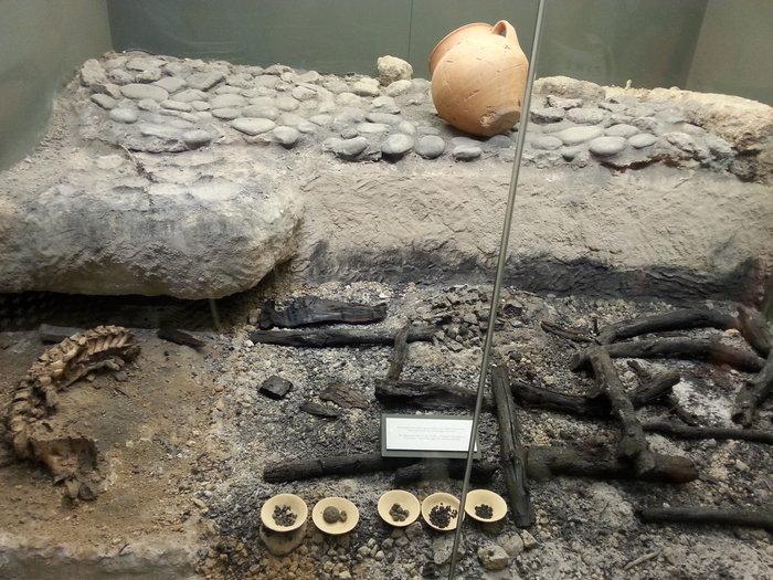 Η προθήκη με τα ευρήματα από την ταφική πυρά ΛΛ/90-91 του αριστοκράτη πολεμιστή και το σκελετό του αποκεφαλισμένου (αιχμάλωτου) άνδρα. Το εύρημα και το τελετουργικό τυπικό ανακαλούν την πυρά του Πατρόκλου και τη σφαγή 12 Τρώων αιχμαλώτων προς τιμήν του από τον Αχιλλέα. Σε πρώτο πλάνο, σπονδές στο νεκρό που σώζονται ακόμα. Το καμμένο από την πυρά μικρό κομμάτι του σκελετού δίπλα (καθώς την πυρά έπαιρνε ο αέρας) μαρτυρά τη συγχρονία.