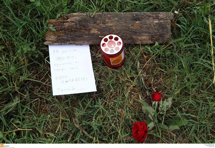 Συγκλονιστικά στοιχεία από τη δολοφονία του 14χρονου στη Γέφυρα Θεσ/νίκης - εικόνα 3