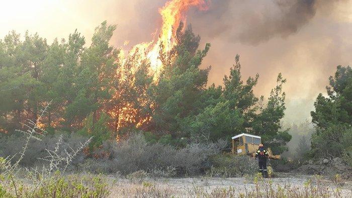 Συνεχίζεται η μάχη με τις φλόγες στη Ρόδο - Φωτο & Βίντεο - εικόνα 7