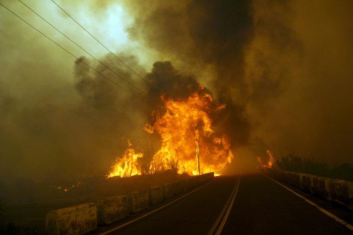 Συνεχίζεται η μάχη με τις φλόγες στη Ρόδο - Φωτο & Βίντεο - εικόνα 8