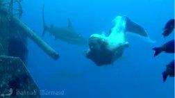 """Μια """"γοργόνα"""" χορεύει στον ωκεανό με καρχαρίες video"""