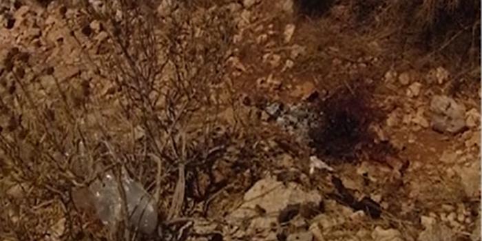 Συνελήφθησαν οι δράστες, τον σκότωσαν με ανεμιστήρα πριν τον κάψουν - εικόνα 2