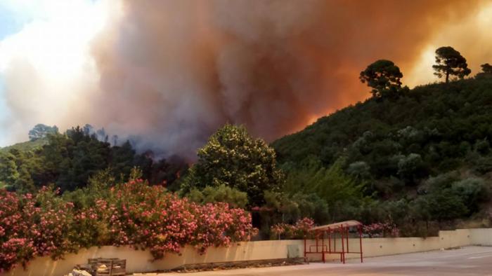 Σε εξέλιξη πυρκαγιά κοντά σε σπίτια στη Χαλκιδική - εικόνα 2