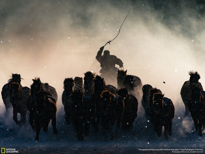 Grand Prize Winner, Photo by Anthony Lau, in Inner Mongolia.