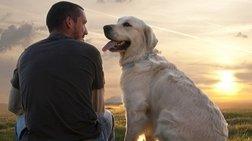 Δεν είναι ο σκύλος; Ποιος είναι ο καλύτερος φίλος του ανθρώπου-Νέα έρευνα
