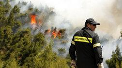 Πυροσβεστική: Υπό έλεγχο οι πυρκαγιές σε όλη τη χώρα