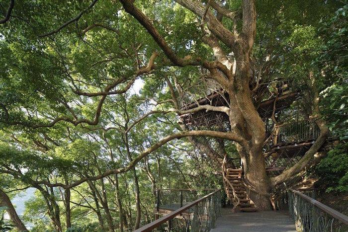 Το πιο ωραίο δεντρόσπιτο στην Ιαπωνία - εικόνα 2