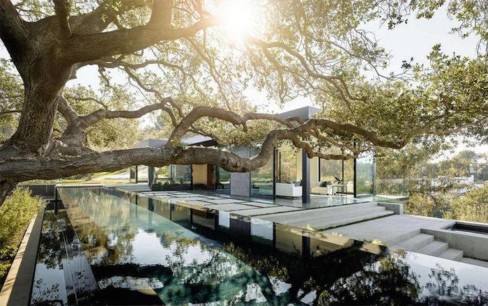 Ένα πανέμορφο γυάλινο σπίτι σε ένα δάσος με βελανιδιές - εικόνα 4