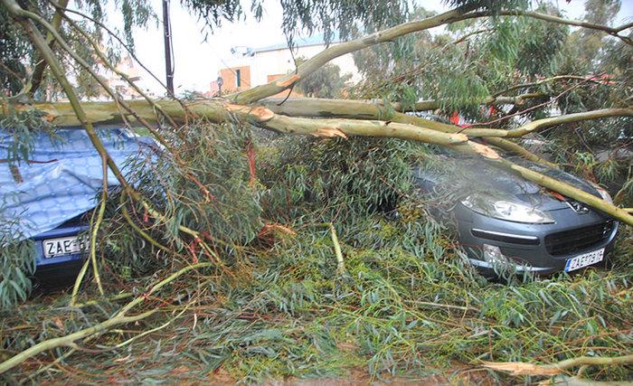 Τυφώνας σάρωσε την Ηλεία- ΦΩΤΟ και VIDEO - εικόνα 6