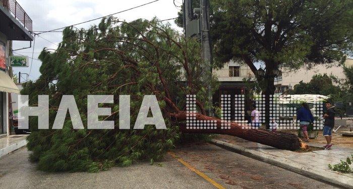 Τυφώνας σάρωσε την Ηλεία- ΦΩΤΟ και VIDEO - εικόνα 2