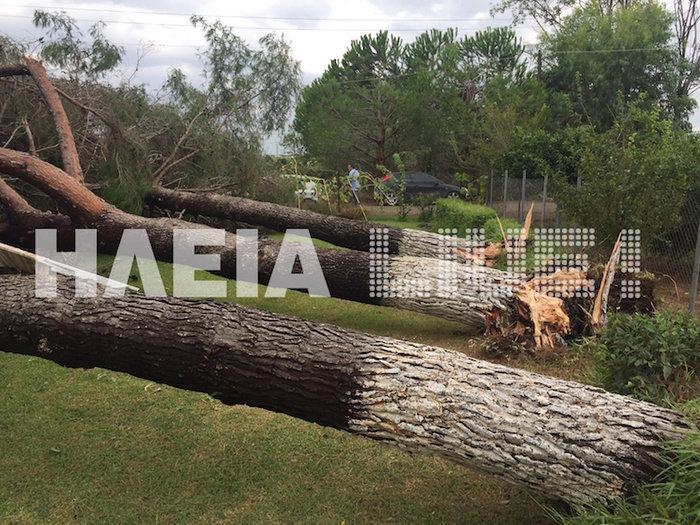 Τυφώνας σάρωσε την Ηλεία- ΦΩΤΟ και VIDEO - εικόνα 3