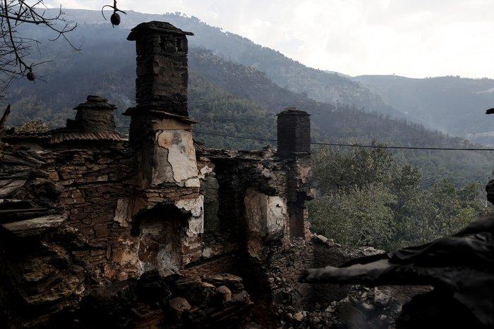 Συνεχίζεται η μάχη με τα πύρινα μέτωπα στη Θάσο - εικόνα 7