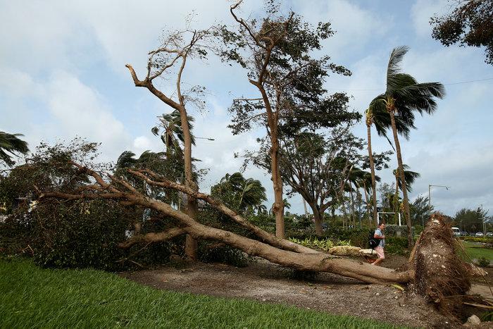 Εξασθενημένος συνεχίζει την προέλαση ο τυφώνας Μάθιου στις ανατολικές ΗΠΑ - εικόνα 3