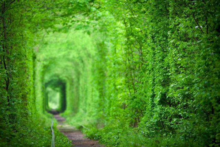 Το μυστικό Τούνελ της Αγάπης: Μια καλά κρυμμένη «Φοντάνα ντι Τρέβι» - εικόνα 2