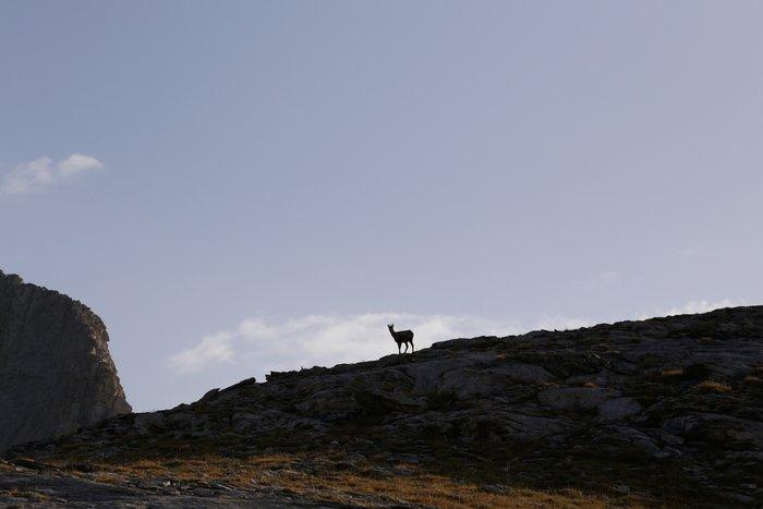 Ανάβαση στον Ολυμπο: Επίσκεψη στο βουνό των θεών - εικόνα 12